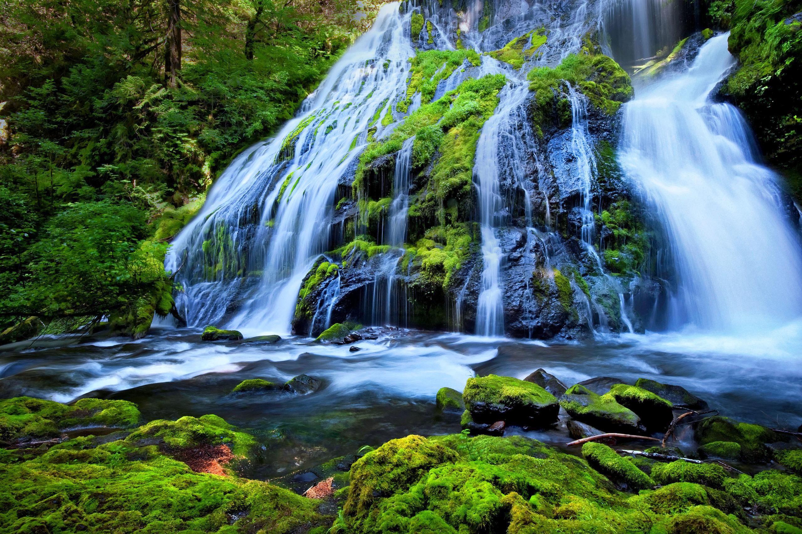 Site Seeing Waterfall In Portland, OR
